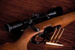 Hunting Rifle Scopes